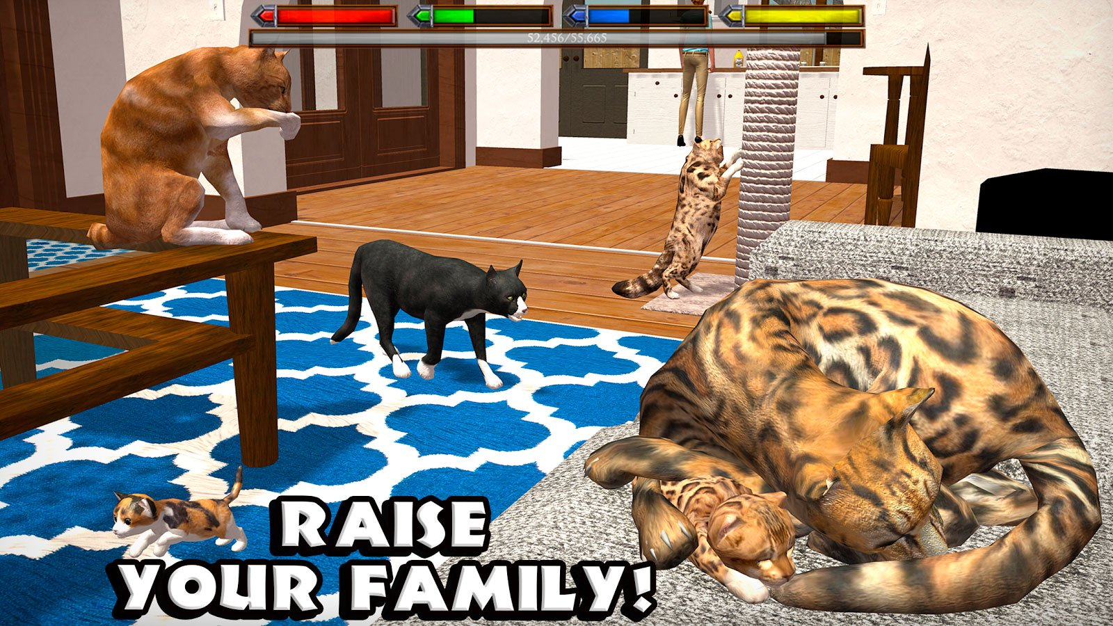 картинки кошек игру символ опасности